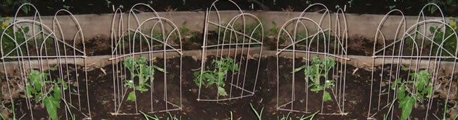 Wire Formed Arch for Small Flowers Support
